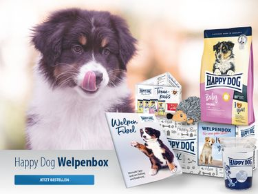 Happy Dog Welpenbox